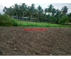 2.5 acres Agriculture land for sale near Vellore dist. Madhanur