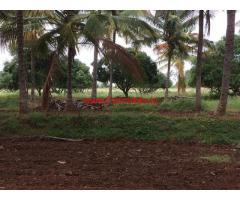 25 Acres Single Boundary Farm Land for sale near Channarayapatna