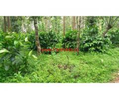 248 Acres coffee estate for sale at chikmaglur district aldur  Road