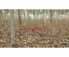 4.15 acres agriculture land for sale, Ongole. 2KM near to nh16