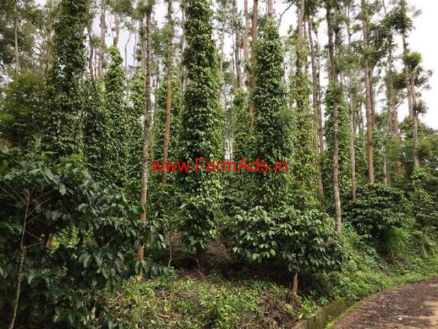 5 acres well maintained coffee estate for sale near Aldur
