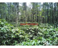10.80 acres farm land for sale at Thandikudi road , Dindigul