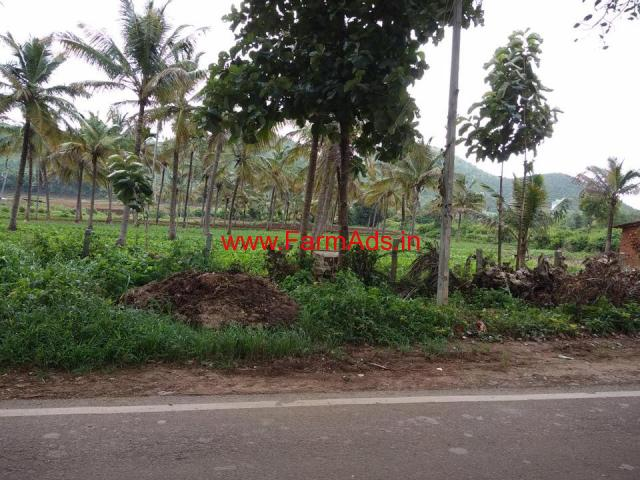 1.30 Acres coconut farm for sale in chikkamagaluru, near Kemmangundi