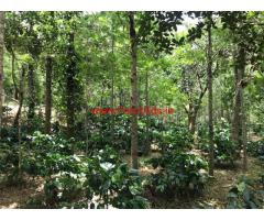 28 acres Farm for sale at Chikmagalur, near to City and Tar Road facing