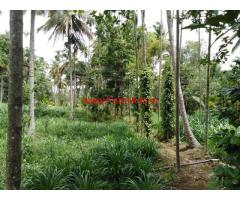1 acre 20gunta farmland for sale 6km from malavalli, 2KM from Highway