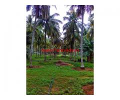 8 acer good yield Coconut Farm Sale at pollachi, near palakkad Road