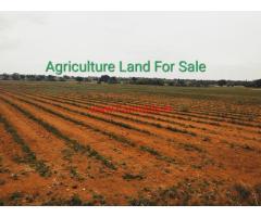 12 Acre Agriculture Land For at Taduru Mandal, Nagarkurnool