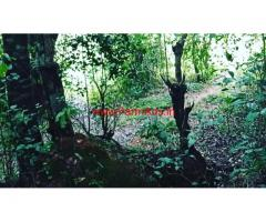 3 acre open plain farm land for sale in Mudigere, 18 km from city
