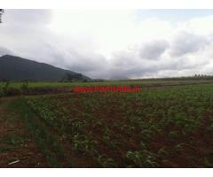 5 acres Agriculture farming land for sale at Lokkanahally, Kollegala Taluk