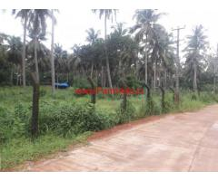 2.5 Acres Coconut farmland for sale on Kapu National Highway