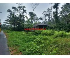 2 acres coffee plantation for sale on Sakleshpura - madikeri Road