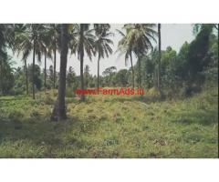 5 Acres Coconut Farm land for sale at shirajipura village - channapatna