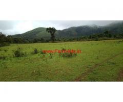 6.5 acre farm land for sale in Mudigere - chikkamagaluru