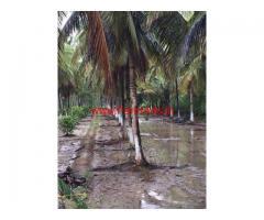 3.60 acres of coconut farm for sale near Kozhinjampara