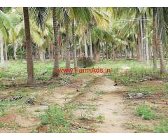 8 Acres well maintained Coconut Farm for sale Udumalaipettai