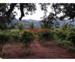 25 cents Alphanso Mango Farm for sale near Alandurai