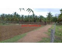 12.5 Acres Farm land for sale at paramenahalli Near Hiriyur