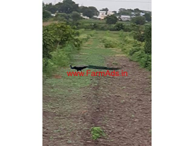 7 acre land for sale in shankerpally at singapuram Village