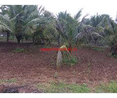3 acres yielding Coconout Farm for sale Vadachittur
