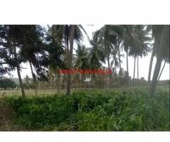 2 Acres 21 gunta canal attached  farm land for sale at Srirangapatna