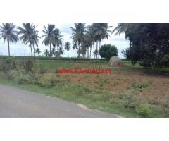 4 acres plain agricultural land available for sale at Lepakshi