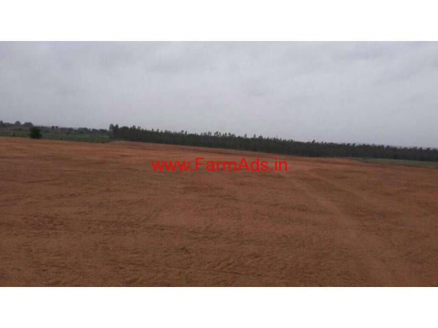 14 Acres Agriculture Land For Sale At Pyaravaram 20 Km From Shamirpet
