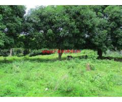 12 Acre Farm land for sale near Belur, 10 KMS from City