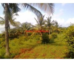 14 acre Farm land for sale in hassan , 35 km from hassan city