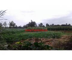 1.36 acres Agriculture Land for sale at Honnagatta, Kasaba Hobli