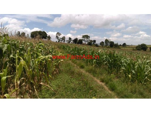 12 5 Acre Agriculture Land For Sale In Belur H An Dist 7 Km From City