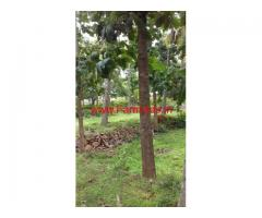 2 Acres Coconut and Mango Farm land for sale at Kempasagara, Magadi
