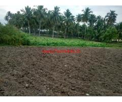 2.5 Acres agriculture land for sale in Madhanur