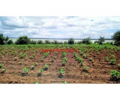 3 Acres 8 Gunta Kapila Back waters attached farm land for sale