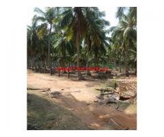 3.75 acres coconut farm land for sale near Rajakkamanagalam