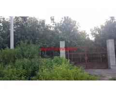 4 acres teak plantation farm land for sale in Tandur