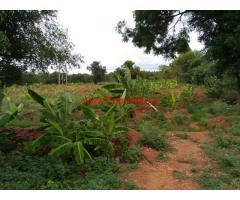 7 acres agriculture land for sale at Singenahalli,Gauribidanur