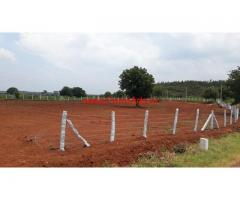 2.9 Acres Agriculture Land Available for sale at Mirzapur near Manneguda