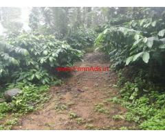 4 Acres Coffee Estate for sale at Virajpete - Coorg