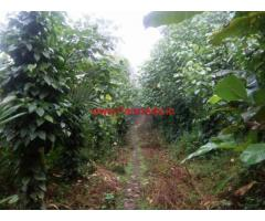 5 acres farm land for sale in Palakkad