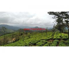 1.5 acres Tea Estate for sale in Vagamon