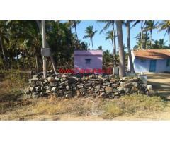 1.10 acres coconut farm land for sale near Jallipatti, 5 kms from Palladam