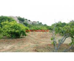 3.8 acres mango farm land for sale near Shoolagiri