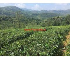 50 cents Tea estate for sale near Vagamon