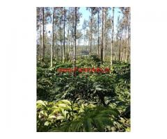 3 acres coffee estate for sale on Shanivarsanthe Somwarpet Road