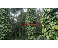 4 Acres Coffee estate for sale at Kodlipete, somvarpete