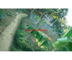 21 cents farm land for sale RKN Road, Panangode, Venganoor