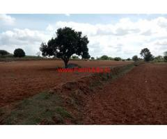 5.20 Acres agriculture land is for sale at Udigala , 12 kms from Gundelpet