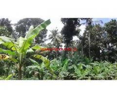 92 cents farm land with house for sale in Kottarakara