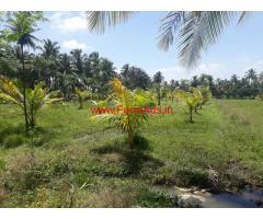 1.25 Acres Agriculture Land for sale in Srirangapatna near Kaveri River