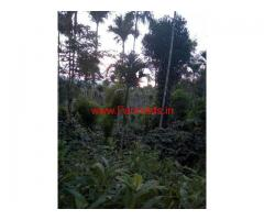 2 acres Farm land for sale at Sulthan Bathery